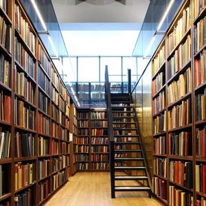 Библиотеки Олонца