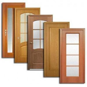 Двери, дверные блоки Олонца